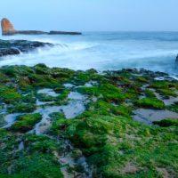 OPTOMETRY PRACTICE FOR SALE: Coastal City - Monterey Bay Area, CA - #76670