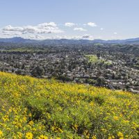 OPTOMETRY PRACTICE FOR SALE: Agoura Hills, CA - #76655