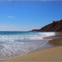 OPTICAL BOUTIQUE FOR SALE: So Cal Coastal, CA - #76671